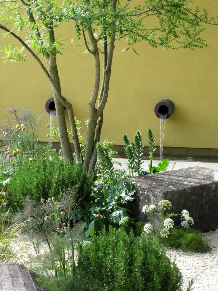 Clive West Chelsea Flower Show
