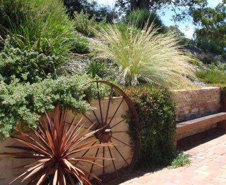 80 best australian native gardens images on pinterest for Tropical garden designs australia