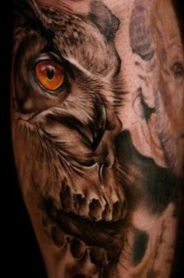 Jeff Gogue: Owl to Skull