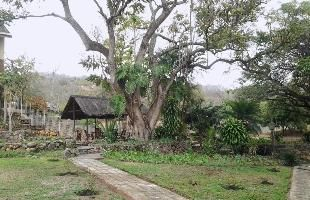 Nelspruit Game Lodges, The Gorge Lodge is only 15 kms drive to Kruger National Park and offers affordable accommodation close to Kruger Park. The Gorge Lodge is ideal B&B accommodation in Nelspruit and self catering accommodation in Nelspruit.