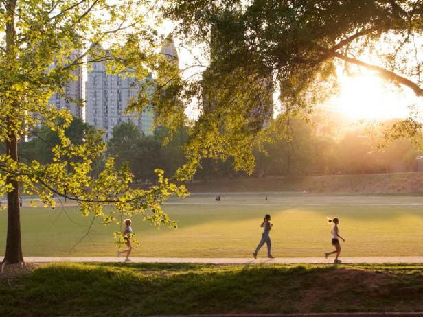 Piedmont Park Events and Attractions  from  GAC