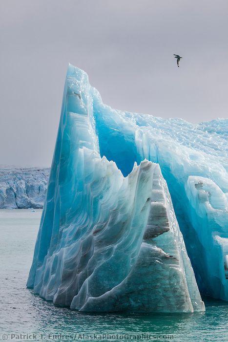 Glacier icebergs, Svalbard, Norway.