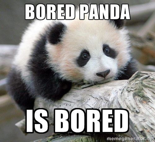 Short Sweet I Love You Quotes: BORED PANDA MEME Image Memes At Relatably.com