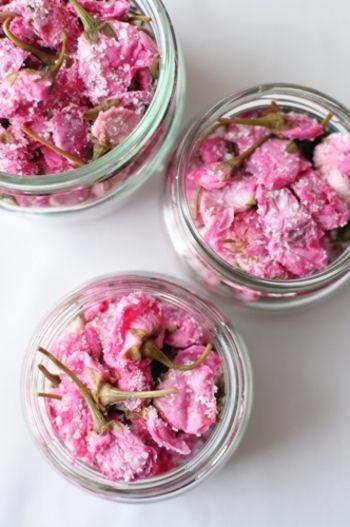 桜の塩漬けの作り方です。途中で出る桜梅酢も色々お料理に使えそう。丁寧に教えてくれています。