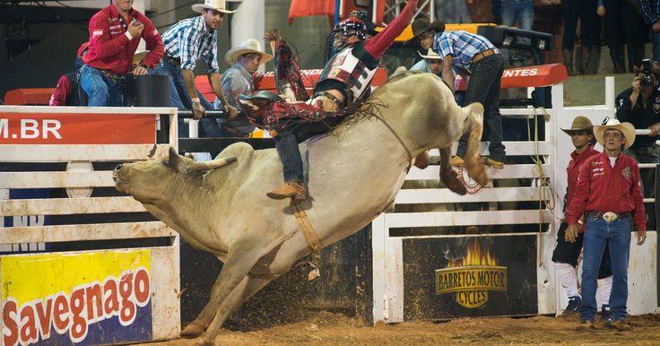 Barretos classifica peões para rodeio nos EUA com prêmio de US$ 100 mil
