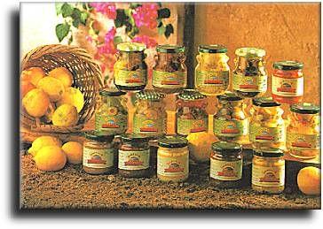 Agritalia s.r.l. Contrada Strasattato Vittoria (RG) Casella postale: n�1 Scoglitti 97010  Tel. ++39 0932-871277 Fax ++39 0932-995039