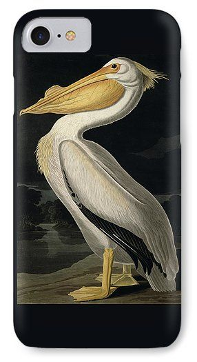 American White Pelican IPhone 7 Case featuring the painting American White Pelican by John James Audubon