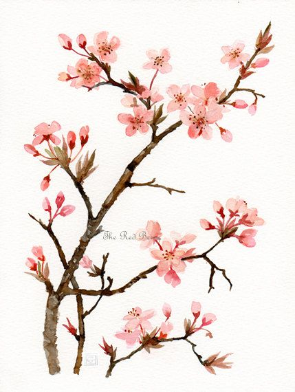 17 best images about tattoo ideas on pinterest for Cherry blossom mural works