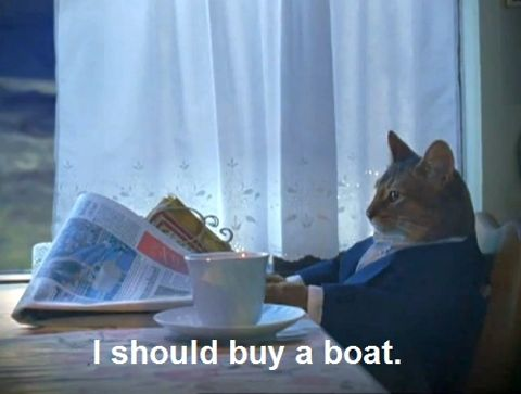 yesThoughts, Catmemes, Funny Cat, Boats, Fat Cat, Businesscat, Kitty, Business Cat, Cat Memes