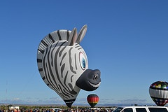 Zebra Balloon / ABQ Intl Balloon Fiesta 2011 by randyg88