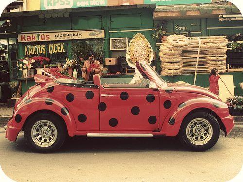 Polka dot VW. It's a Lady Bug!