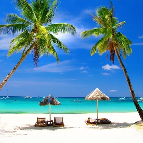 Verblijf op basis van vol pension op het Fun Island Resort. http://www.333travel.nl/strandvakantie/malediven/fun-island-resort?productcode=a504