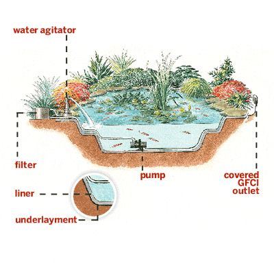 Illustration: Rodica Prato | thisoldhouse.com | from Everything You Need to Know to Build the Perfect Backyard Pond