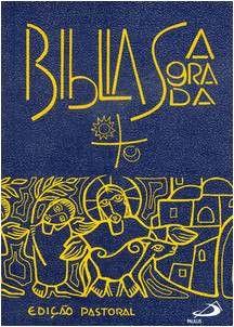 Biblia Sagrada - Mediana Vinil (Portugues)