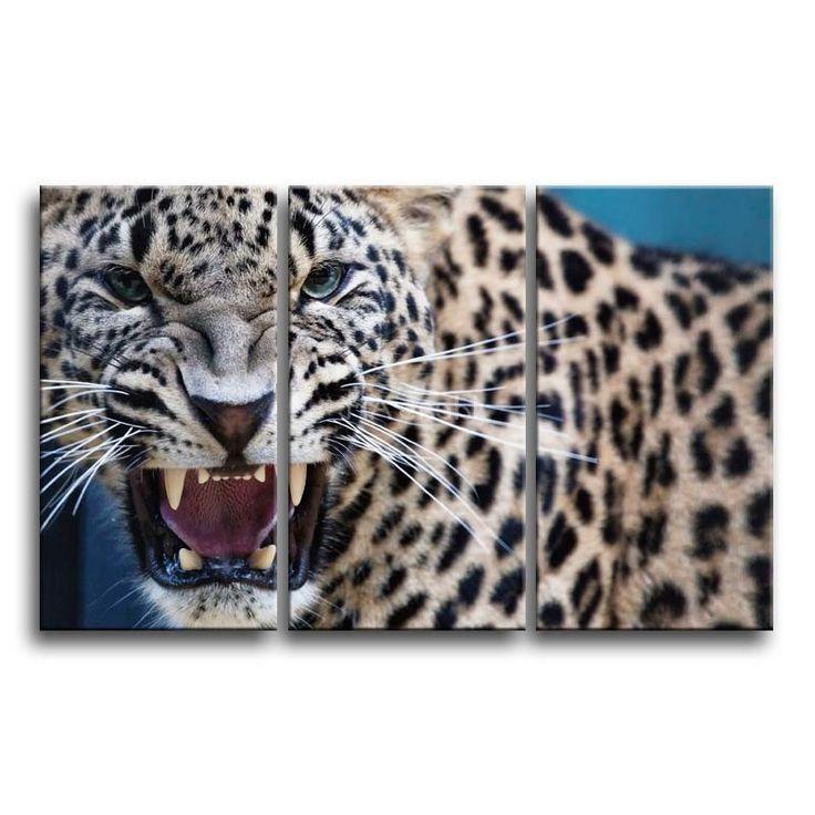 Best 25+ Leopard bedroom ideas only on Pinterest | Leopard ...