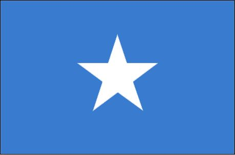 "The flag of Somalia was officially adopted on October 12, 1954. The blue field is the same shade used by the United Nations.           The five-pointed white ""Star of Unity"" is symbolic of the Somali race found in Djibouti, Ethiopia, Kenya and the former associated British and Italian colonies."