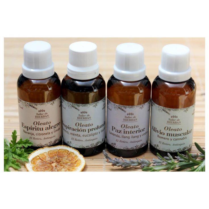 Oleatos del Taller // Natural Oils #NaturalMedicine #Natural #HerbalMedicine #MedicinaNatural #TallerDeHierbas #Oils