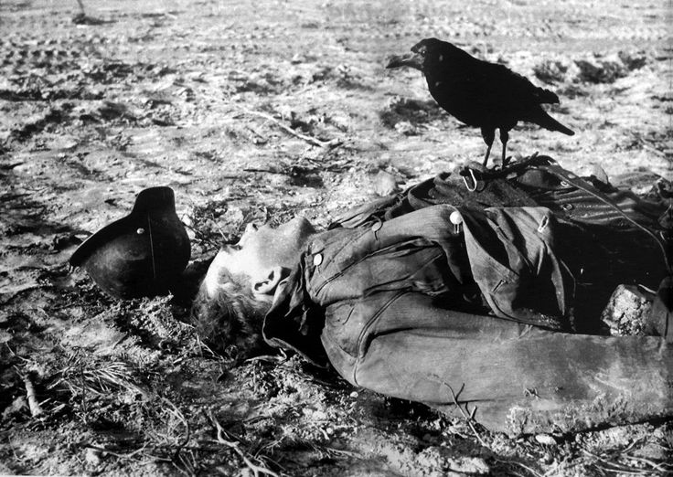 A German who didn't make it is visited by a crow.German Soldiers, Front, Ww2 Germany, Wars Ww2, Eastern Front, East Front, Dead German, Crows, Wars Ii