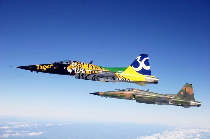 BRAZIL AIR FORCE - NORTHRUP F-5E TIGER II