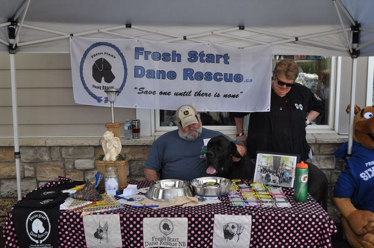 Fresh Start Dane Rescue | NS, NB, PEI, NL