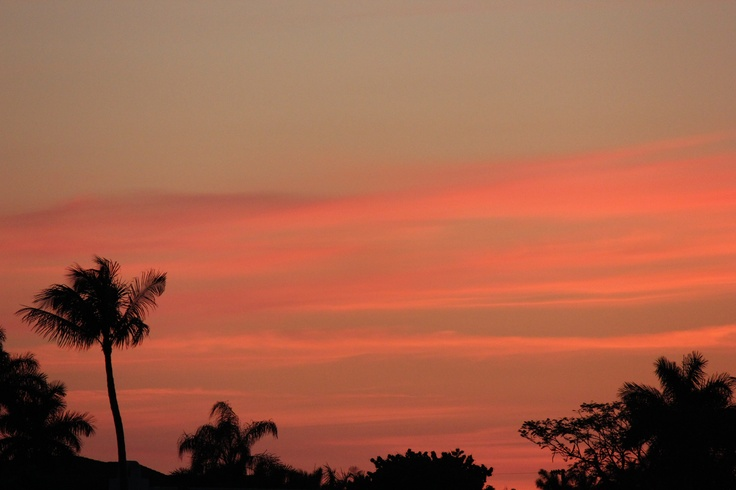 A beautiful night sky....