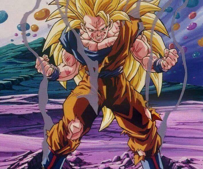 Super Saiyan 3 Goku from Fusion Reborn.