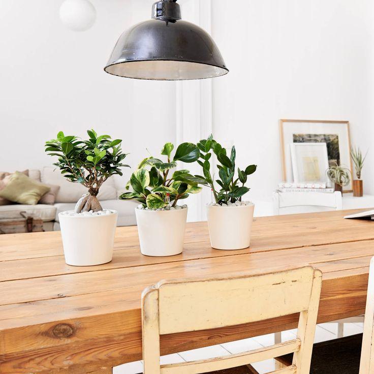 63 best Wohnen im Industrie-Stil images on Pinterest Apartments - interieur aus beton und aluminium urban wohnung