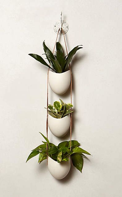 Leather-Latched Wall Planter #anthroregistry