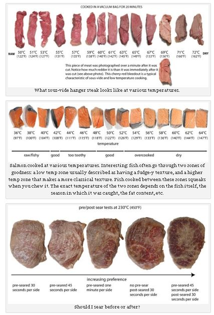 20 best ideas about meat temperature chart on pinterest meat temperature guide cooking. Black Bedroom Furniture Sets. Home Design Ideas