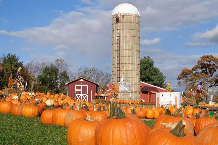 The Top 36 Fall Harvest Festivals in Philadelphia and the Countryside — Visit Philadelphia — visitphilly.com