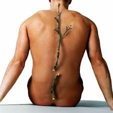 Se poate vindeca osteoporoza?