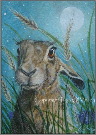ACEO Print Hare Harvest Moon by eveningstardust on Etsy, $6.00