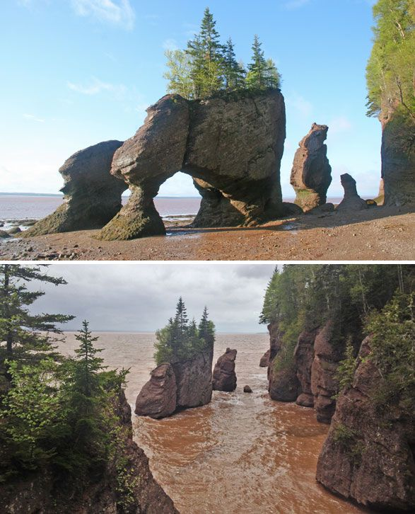 bay of Fundy, Hopewell Rocks in Canada. Travel photo by @Katja Presnal