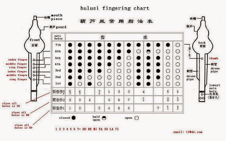 Hulusi Fingering Chart STATIC World Music Instruments and Models - flute fingering chart