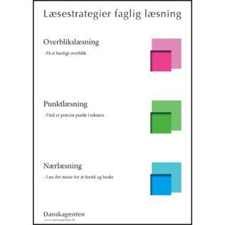 For at kunne læse fagbøger effektivt, skal eleverne kende de basale læsestrategier: overblikslæsning, punktlæsning og nærlæsning. Her præsenteres de både i en kort og en mere uddybet udgave.