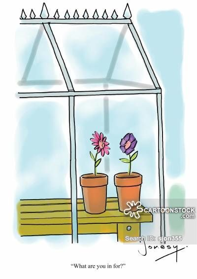 530 best images about gardening humor on pinterest for Garden shed jokes