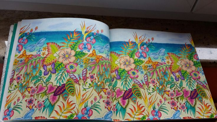Color Pencil Drawings Adult Coloring Colouring Books Johanna Basford Jungles Prismacolor Enchanted Everything