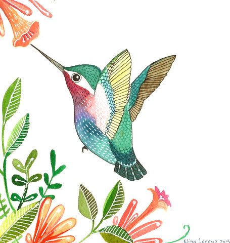 Humming bird, wall art  Was $9.99 Now $6.99 This is a print from original watercolor painting. I love birds and I have been painting them in