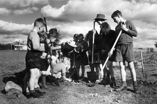 The Fairbridge children were taught skills such as tree and vegetable planting. Image courtesy Bigrigg Collection – Molong and District Historical Society