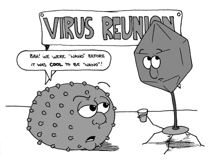 ap biology cartoons Google Search Science Humor