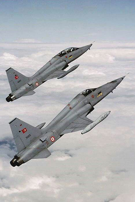 Old fighters NF-5A\B Turkish Air Force