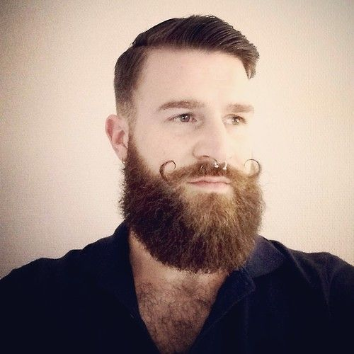 Beards And Mustaches: 135 Best Beard Mania: Beard Appreciation Society Images On