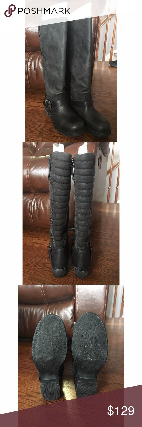 Steve Madden Rampant Boots Steve Madden Rampant Boots. Black leather, size US 9. Never worn with full packaging (still in box with tissue paper with cardboard inside boots). In perfect condition, so price is firm, no low ballers please. Two zippers on each side of each boot. Super cute, but they don't fit me 😭🖤                                                                                        🚭Coming from a smoke free home! 🚭 Steve Madden Shoes