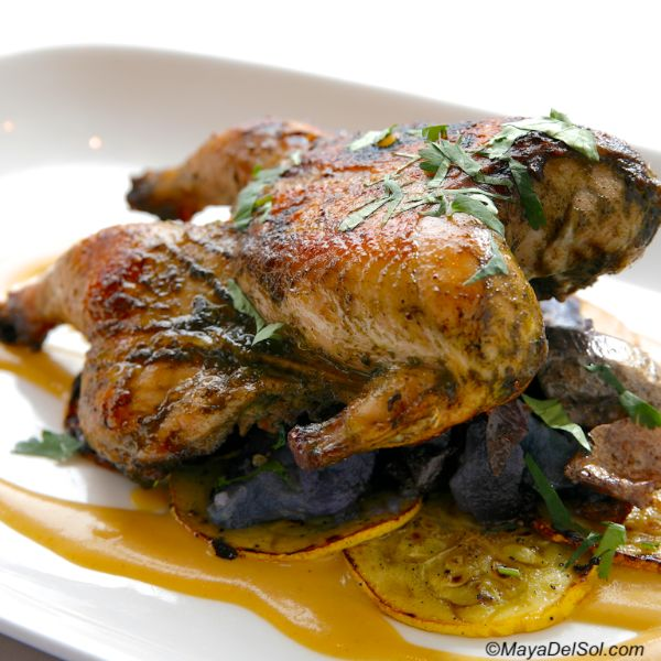 pollo jamaicano | jamaican jerk chicken, purple potato, squash, pineapple-mango sauce