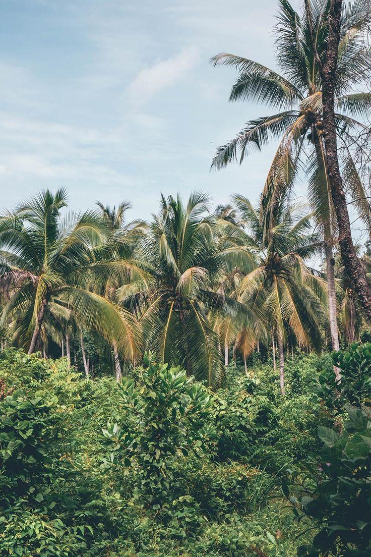 Koh Yao Noi Accommodation | Thailand | Thai Island | Island Hideout | Andaman Coast