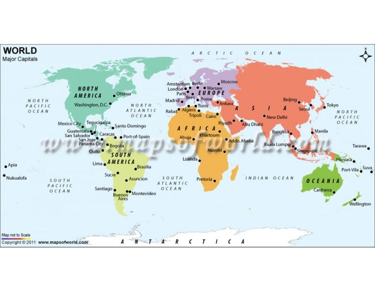 214 best world map images on pinterest wall maps cork boards buy map of major capitals of the world online gumiabroncs Choice Image