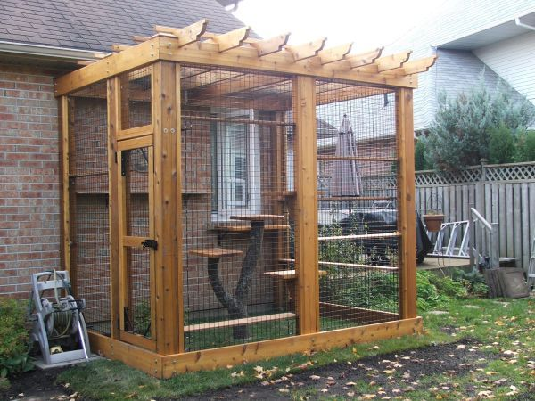 Wooden cat enclosure with real tree cat tower..... #cats #catio #PinMyDreamBackyard
