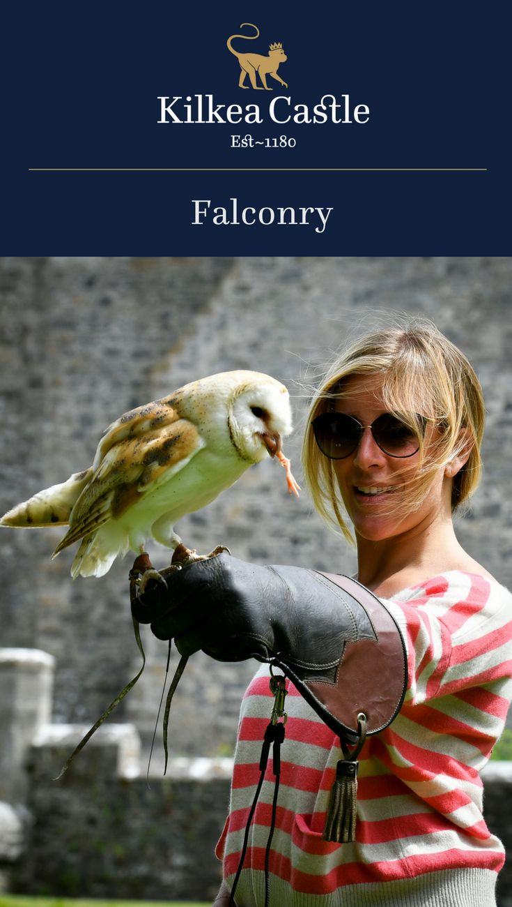 A noble and ancient sport, falconry offers a unique and memorable experience. The majesty of Falcons, Owls and Hawks can be experienced amidst the backdrop of our historic Castle.