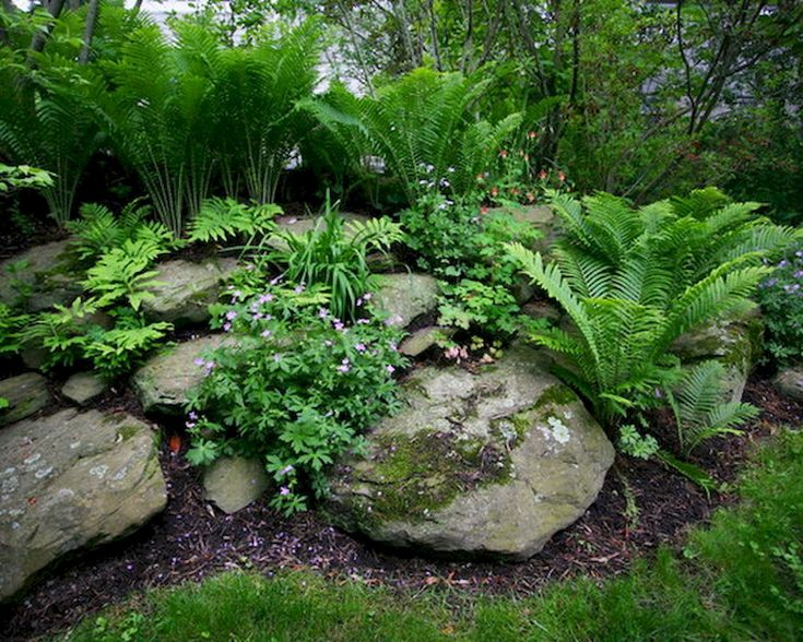 Stunning 75 Stunning Rock Garden Landscaping Design Ideas https://crowdecor.com/75-stunning-rock-garden-landscaping-design-ideas/