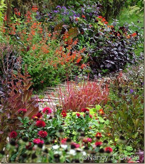 Red Hummingbird Butterfly Garden Ideas Design Ideas Pinterest Gardens Plants And See It